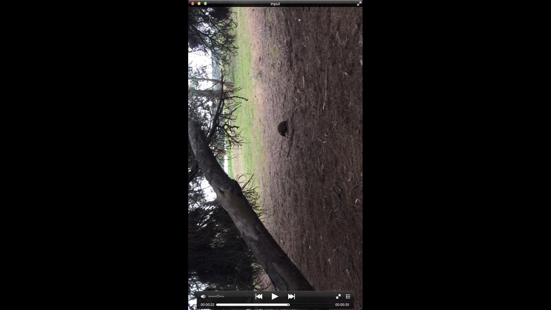 rusl net - HandBrakeCLI video rotation